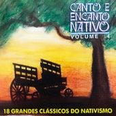 Canto e Encanto Nativo, Vol. 4 de Various Artists
