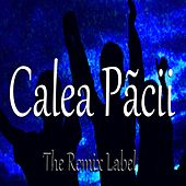 Calea Pãcii by Luz