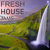 Fresh House Jams by Various Artists