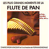 Les plus grands moments de la flûte de Pan by Vincent Chareyron
