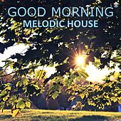 Good Morning Melodic House by Various Artists