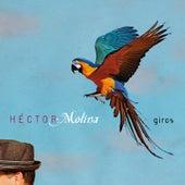 Giros von Héctor Molina