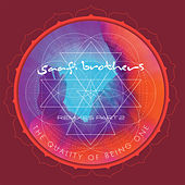 The Quality of Being One (Remixes, Pt. 2) by Saafi Brothers