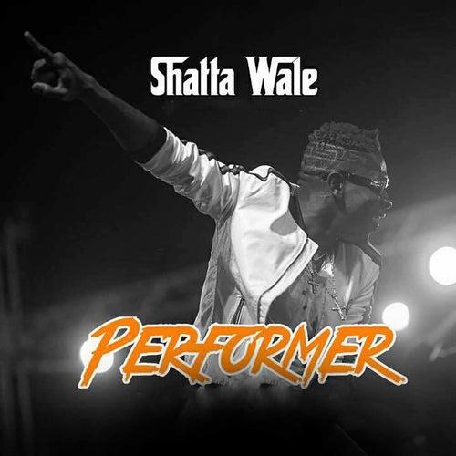 Performer de Shatta Wale