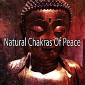 Natural Chakras Of Peace de Zen Meditate