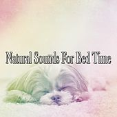 Natural Sounds For Bed Time by Nature Sound Series