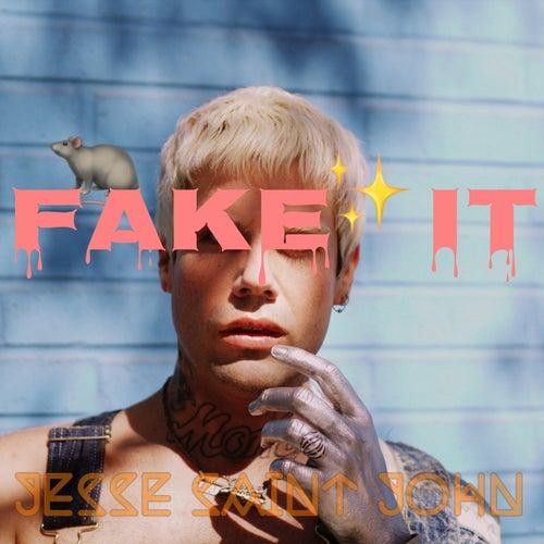 Fake It by Jesse Saint John