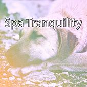 Spa Tranquility de Best Relaxing SPA Music