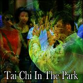 Tai Chi In The Park von Lullabies for Deep Meditation