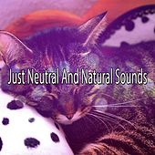 Just Neutral And Natural Sounds de Ocean Sounds Collection (1)