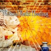 Natural Reiki Healing von Massage Therapy Music