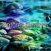 Natures Blessings von Lullabies for Deep Meditation