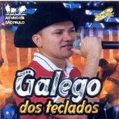 Ao Vivo em São Paulo von Galego dos Teclados