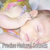 Precise Natural Sounds de Smart Baby Lullaby