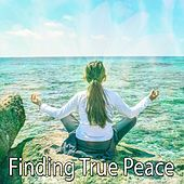 Finding True Peace von Lullabies for Deep Meditation