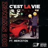 C'est la vie by Big Swingz