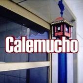 Souvenir de Calemucho