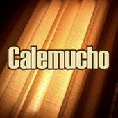 The Incredible Endless Party de Calemucho
