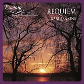 Requiem – Karl Jenkins by Various Artists
