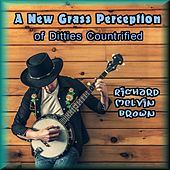 A New Grass Perception of Ditties Countrified by Richard Melvin Brown
