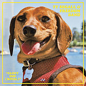 Fanny Dog (Royal) by Ty Segall