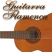 Guitarra flamenca Vol.2 by Various Artists