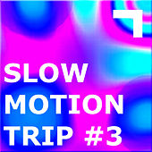 Slow Motion – Speed #3 by Various Artists