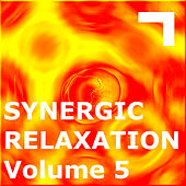 Synergic Relaxation – Session 5 by Various Artists