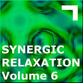 Synergic Relaxation – Session 6 by Various Artists