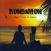 Aguas Frescas De Jamaica de Rondamon