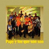Pupy y Los que Son Son Best Of by Pupy y los Que Son Son