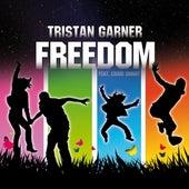 Freedom (feat. Craig Smart) by Tristan Garner