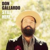Still Here by Don Gallardo