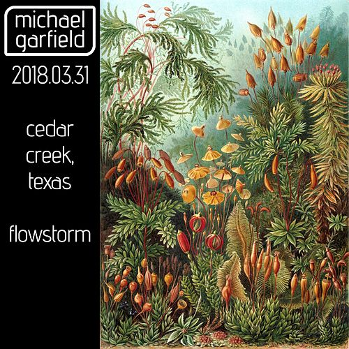 Live at Flowstorm by Michael Garfield