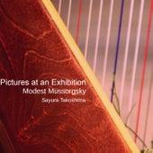 Pictures at an Exhibition de Sayura Takoshima