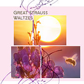 Great Strauss Waltzes by Various Artists