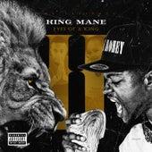 Eyes of a King 2 de King Mane