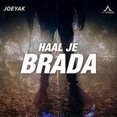 Haal Je Brada by JoeyAK