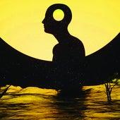Fly Away (Edit) von Damian Lazarus