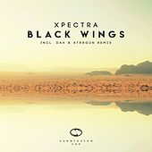 Black Wings by Xpectra