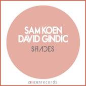 Shades by Sam Koen