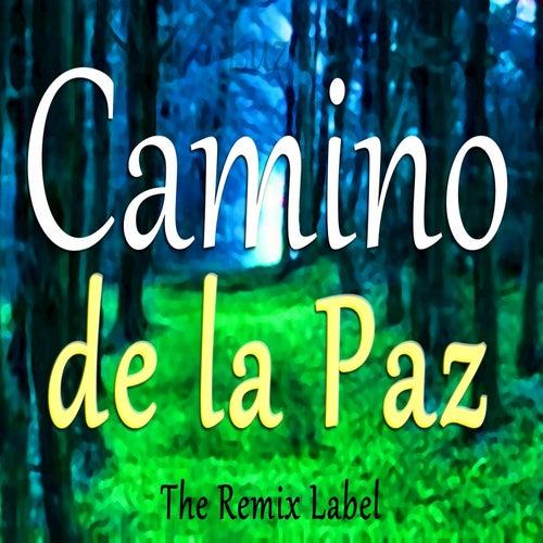 Camino de la Paz by Luz