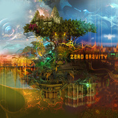 Zero Gravity de Various Artists