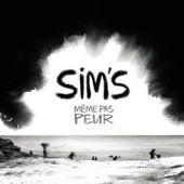 Même pas peur by Sims