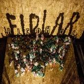 Alcohol von FIDLAR