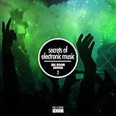 Secrets of Electronic Music - Big Room Edition, Vol. 2 by Various Artists