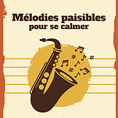 Mélodies paisibles pour se calmer by Piano Dreamers
