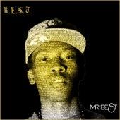 B.E.S.T. de Mr. Best