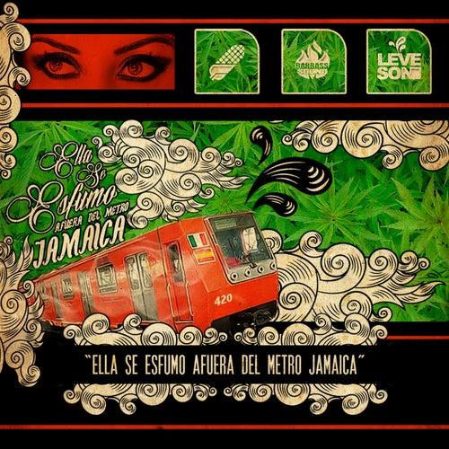 Ella Se Esfumo Afuera del Metro Jamaica by Grupo Leveson