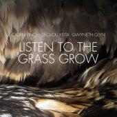 Listen to the Grass Grow von Seckou Keita Quartet